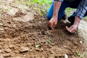 Tetanus 300x200 - Gärtnern hilft gegen Demenz